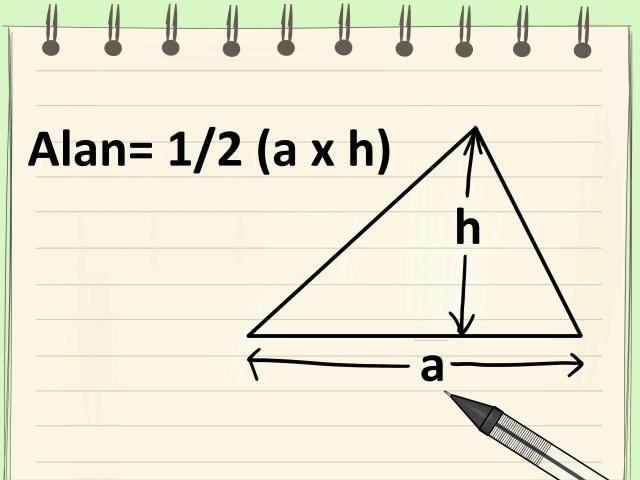 Üçgenin Alanı Nasıl Bulunur (Taban ve Yükseklik Verildiyse) Adım 1)